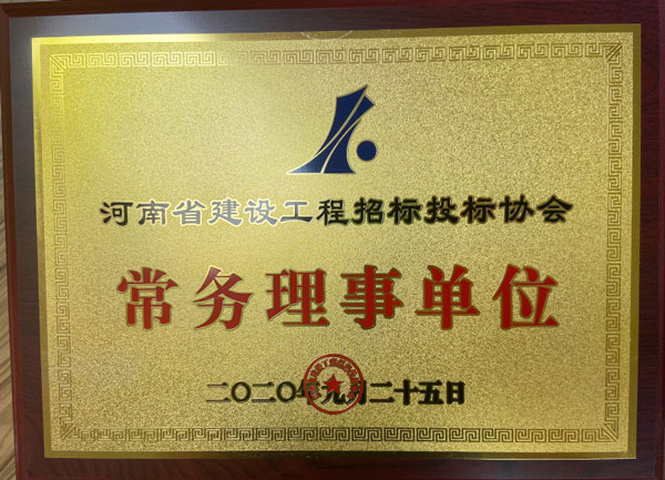 河南省招投標協會常務理事